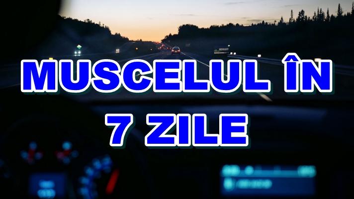 muscelul_in_7_zile_foto