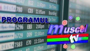 program_emisiuni_muscel_tv